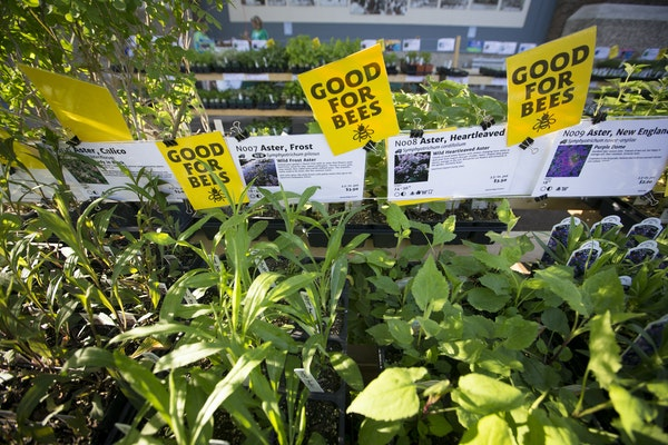 Bee friendly plants at the Friends School Plant sale at the State Fair Grandstand in Falcon Heights, Minn., on Thursday, May 5, 2016.  ] RENEE JONES S