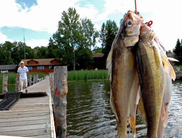 Have a favorite opening day memory? Hundreds of thousands of Minnesota walleye anglers do. We want to hear yours.