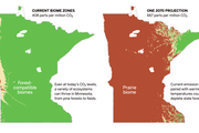 Climate change could mean more prairie, less forest in Minnesota