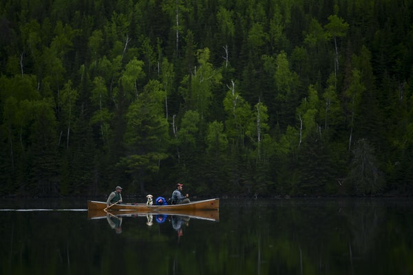 Tony Jones, his dog Crosby, and Bob Timmons paddled from Mountain Lake toward their portages to Moose Lake in 2019. Aaron Lavinsky • aaron.lavinsky@