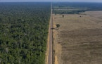 FILE - In this Nov. 25, 2019 file photo, highway BR-163 stretches between the Tapajos National Forest, left, and a soy field in Belterra, Para state,
