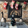 Canada goose Peeps and his mate Puddles at the Hendrickson family's Prior Lake home at Christmas.