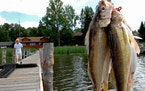 Anderson: Indicators point to a solid opening Saturday for fishing fans