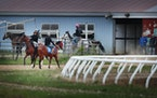 Exercise riders and horses head to and from the track at Canterbury Park in Shakopee.