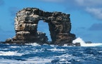 Before the collapse, Darwin's Arch lay off Ecuador's Galápagos Islands, an area famous for scientific discovery.