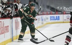 Minnesota Wild defenseman Ian Cole