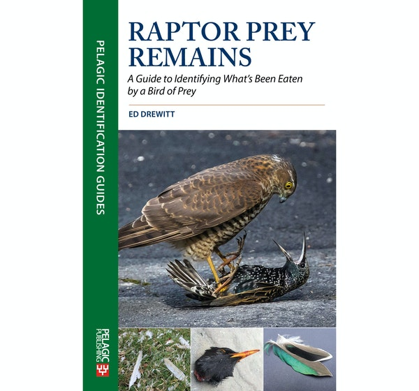Avian forensics the subject of new book