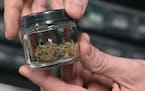 Medical marijuana at Montana Advanced Caregivers, a medical marijuana dispensary, in Billings, Mont.