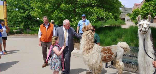"""Gov. Tim Walz noted the """"incredible drop"""" in student infections during his appearance at the Minnesota Zoo on Thursday to promote vaccination and"""