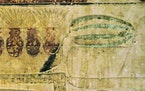 An image provided by Lise Mannich shows a 4,450-year-old Egyptian papyrus depicting a watermelon-like object, suggesting that the sweet fruit, possibl