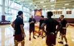 Between the end of March and mid-April, first-year Gophers men's basketball coach Ben Johnson landed six transfers.