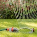 Follow these key tips for keeping your roses blooming and your grass growing when it's a scorcher out there.