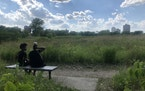 South Siders Damonta Clay and Makayla Dade took in the 6-acre South Shore Nature Sanctuary, on a Lake Michigan peninsula in Chicago.