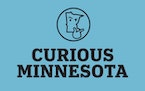 Ask a question now: What are you curious about, Minnesota?