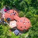 The 8,050-square-foot geodesic Double Domes home in Eden Prairie is part hidden oasis, part magical funhouse.