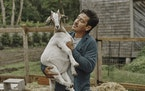 Jonathan Knight keeps goats at his farmhouse in Essex, Mass.