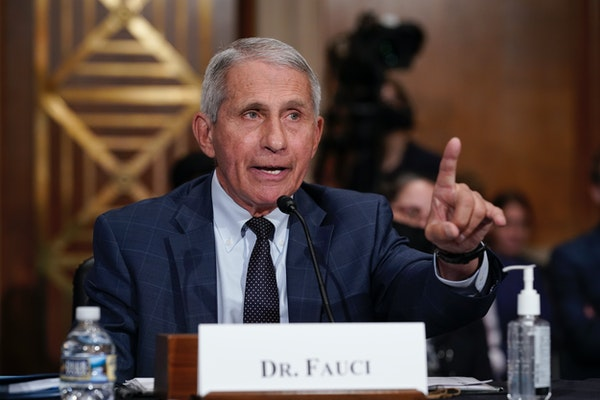 Fauci, Paul clash on virus, trade charges of lying