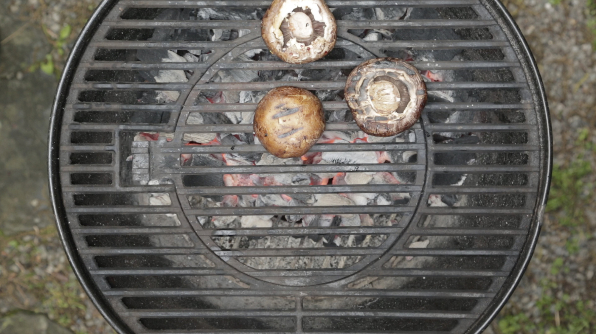 Mushrooms are best cooked directly over a fire.
