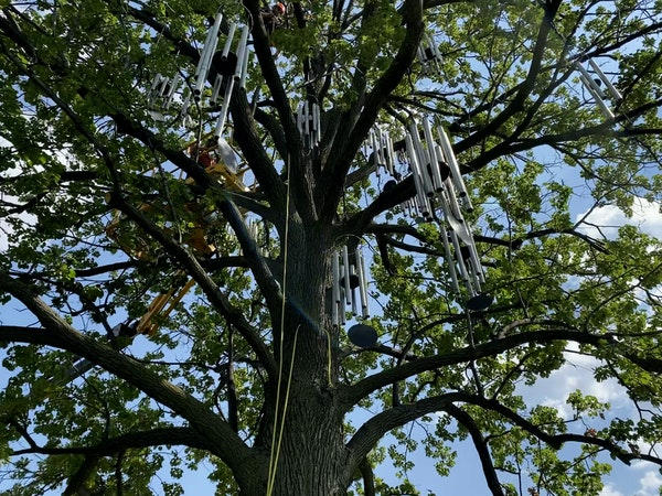 Wind chimes return to Sculpture Garden