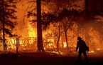 A firefighter passes a burning home as the Dixie Fire flares in Plumas County, Calif., Saturday, July 24, 2021. The fire destroyed multiple residences