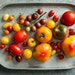 Mette Nielsen • Special to the Star TribuneGarden-fresh tomatoes are one of the quintessential tastes of summer.