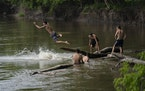 A group of friends swimming in the Minnesota River in Bloomington in 2020.