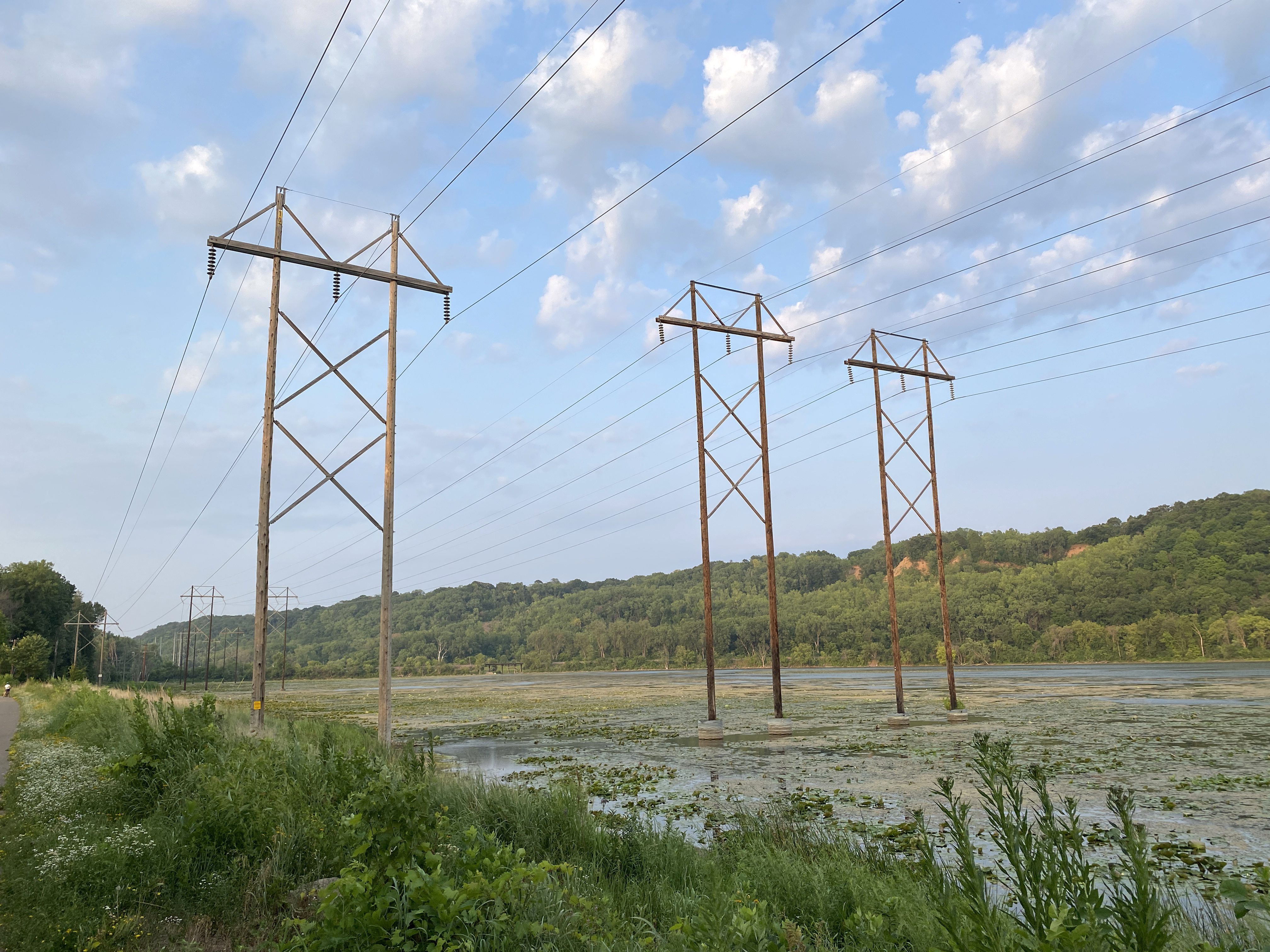 Electrical transmission lines in Lilydale Regional Park in St. Paul.