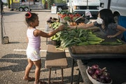 Ella Vang, 8, handed Aubree Turner, 4, a cucumber at the Farmers Market in Oakdale this month. Aubree's racially blended family recently moved from