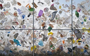 After days of high winds, thousands of plastic bags from the Waste Management landfill in Elk River were trapped on the landfill's perimeter fence i