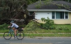 A woman rode her bike past a home with uprooted trees and storm damage after overnight storms with high winds rolled through the area in Richfield.