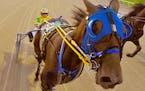 Lemoyne (Mooney) Svendsen races at Running Aces.