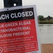 Barker's Island beach in Superior, Wis., was closed last week due to a potentially toxic algae bloom in a warmer Lake Superior.