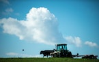 In this file photo, a Glenwood, Minn., farmer uses a tractor to bail hay on a field used for rotational grazing.