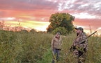 Tom Larson, left, and Matt Slater await a flight of ducks while hunting northwest of Willmar on Saturday, opening day of the 2021 Minnesota watrerfowl