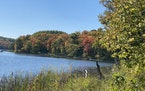 Maplewood State Park fall colors - September 25, 2021