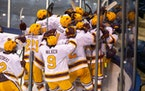 during Big Ten Men's Ice Hockey Tournament action between University of Minnesota vs Michigan State University at Compton Family Ice Arena in South