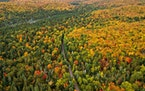 Northern Minnesota is the first to turn each fall and the mix of colors make for a spectacular show. The aspen, pine, maple and birch create a kaleido