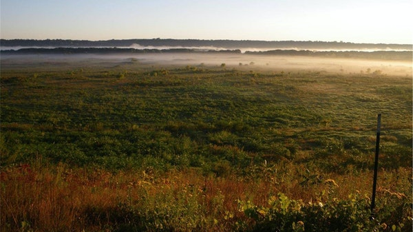 Fog hung over the tallgrass prairie in a view from the Seppmann Mill overlook, with the Minnesota River in the distant horizon.